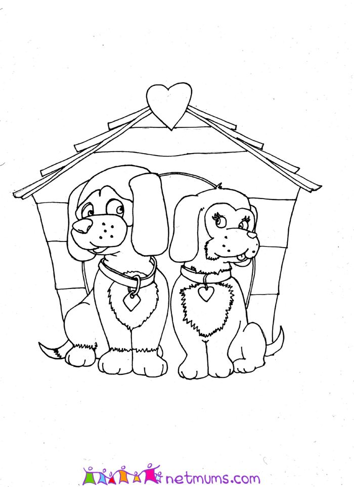 Puppies And Valentines. Puppy love